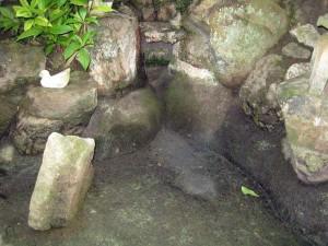 内庭の池 2