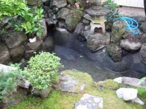 内庭の池 1
